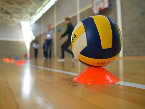 image of a ball in a sports hall