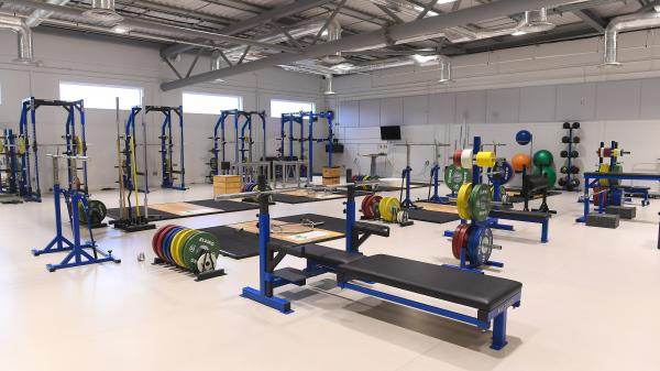 Generic image of the Sport Ireland Institute Gym